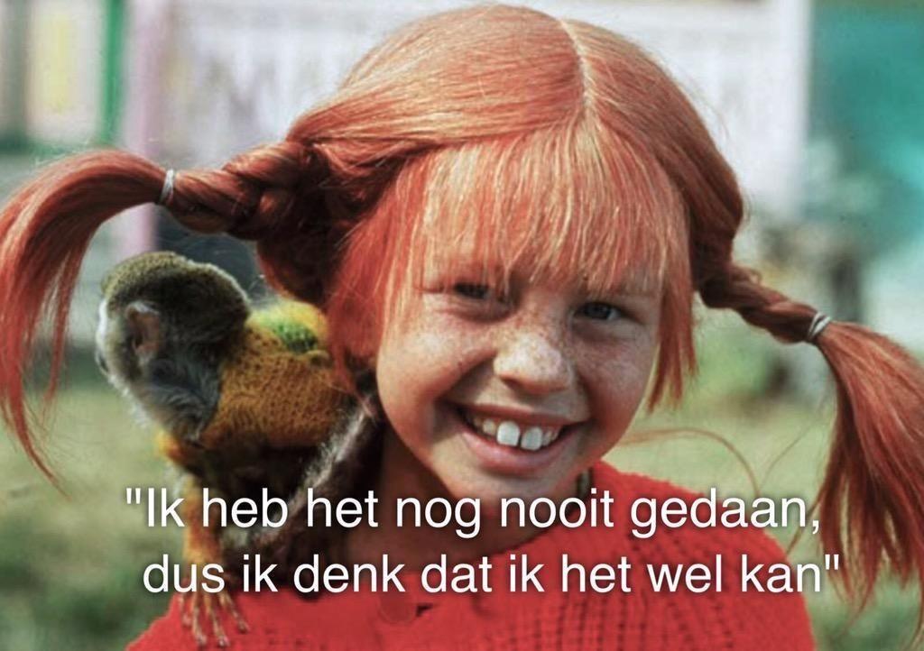 Wat wij kunnen leren van Pippi Langkous